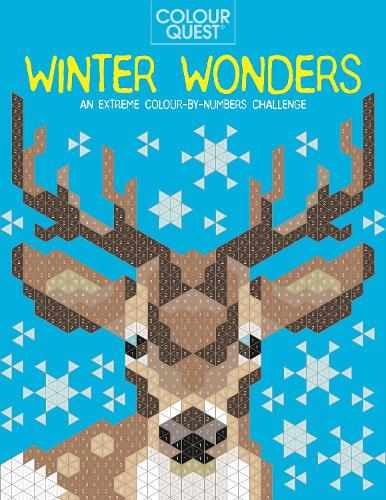 Colour Quest: Winter Wonders: An Extreme Colour by Numbers Challenge - Colour Quest (Paperback)