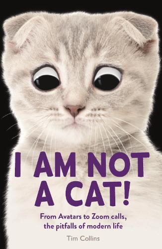 I Am Not a Cat!: From Avatars to Zoom Calls, the Pitfalls of Modern Life (Paperback)