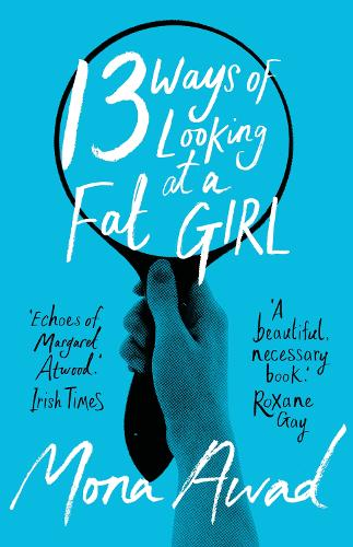 13 Ways of Looking at a Fat Girl (Paperback)