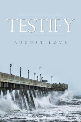 Testify (Paperback)