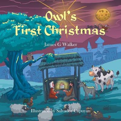 Owl's First Christmas (Paperback)