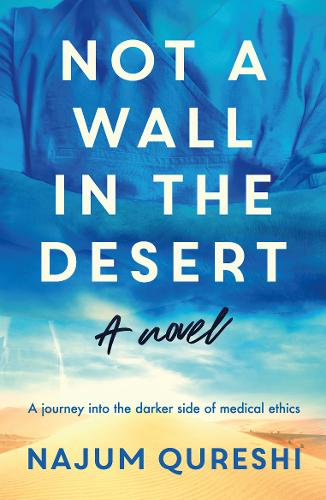Not a Wall in the Desert (Paperback)