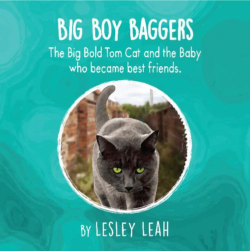 Big Boy Baggers: The Big Bold Tom Cat and the Baby Who Became Best Friends (Paperback)