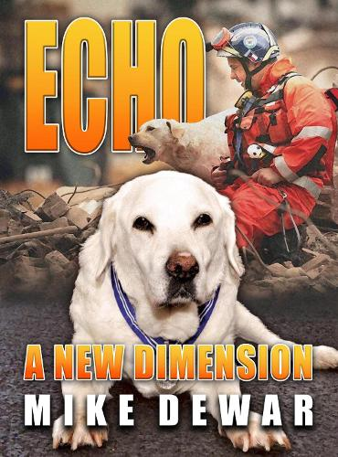 Echo: A New Dimension (Paperback)