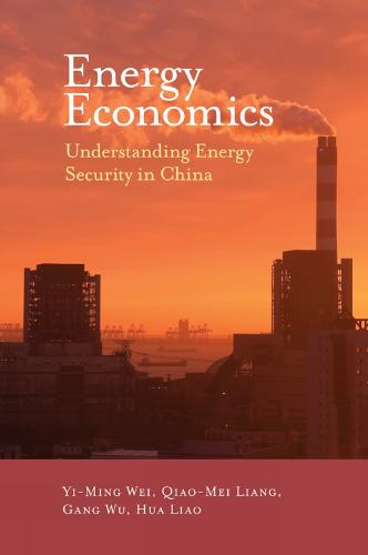 Energy Economics: Understanding Energy Security in China (Hardback)