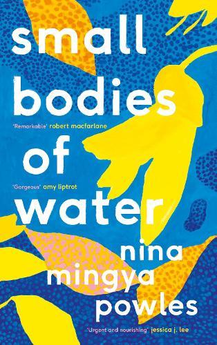 Small Bodies of Water (Hardback)