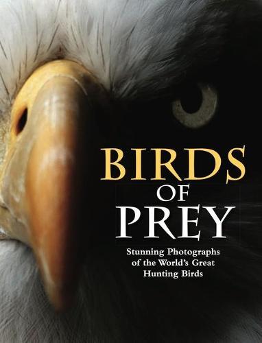 Birds of Prey: Stunning Photographs of the World's Great Hunting Birds - Animals (Hardback)