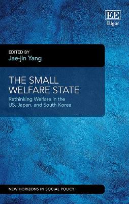 The Small Welfare State: Rethinking Welfare in the Us, Japan and South Korea - New Horizons in Social Policy Series (Hardback)