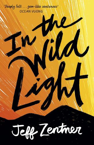 In the Wild Light (Paperback)