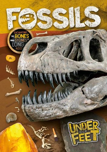 Fossils - Under Our Feet (Hardback)
