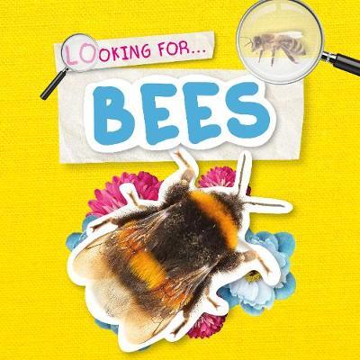 Bees - Looking for (Hardback)