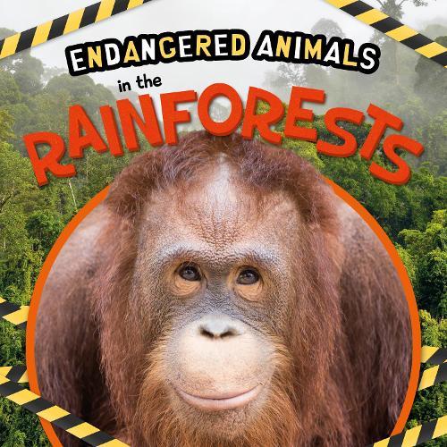 In the Rainforests - Endangered Animals (Hardback)