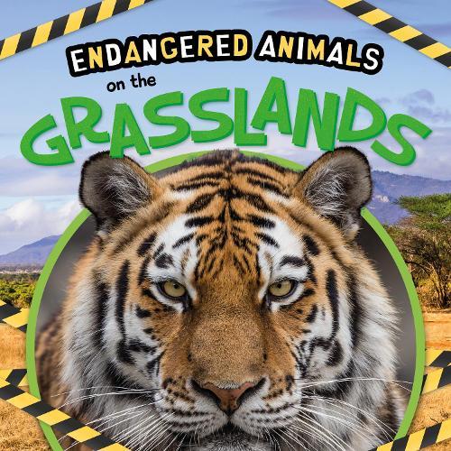 On the Grasslands - Endangered Animals (Hardback)