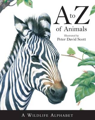 A -Z of Animals (Hardback)