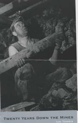 Twenty Years Down the Mines (Paperback)