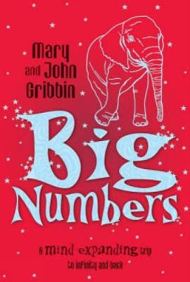 Big Numbers: A Mind-Expanding Trip to Infinity and Back (Paperback)