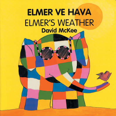 Elmer's Weather - Elmer (Board book)