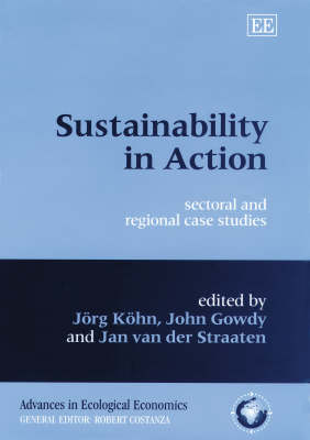 Sustainability in Action: Sectoral and Regional Case Studies - Advances in Ecological Economics Series (Hardback)