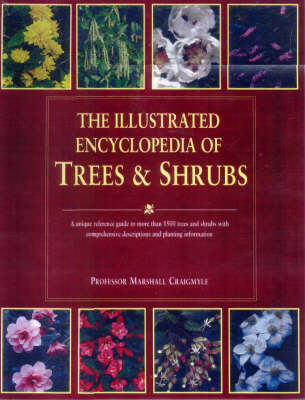 The Illustrated Encyclopedia of Trees and Shrubs (Hardback)
