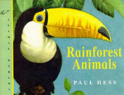 Rainforest Animals - Animal World S. (Paperback)