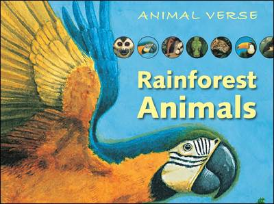 Image result for rainforest animals by paul hess