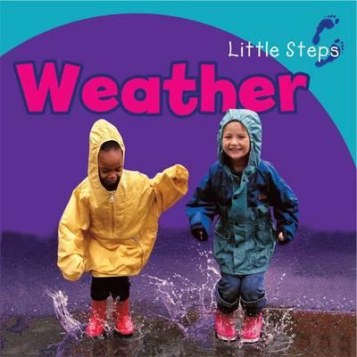 Weather - Little Steps (Board book)