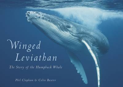 Winged Leviathan: The Story of the Humpback Whale (Hardback)
