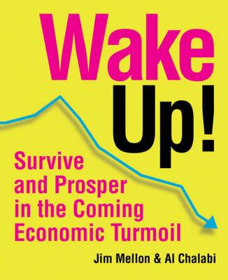 Wake Up!: Survive and Prosper in the Coming Economic Turmoil (Paperback)