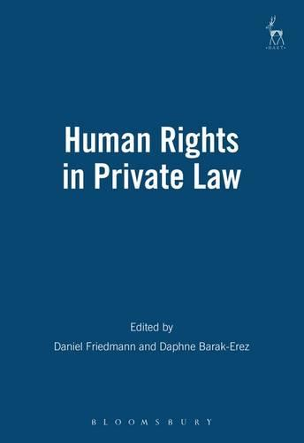 Human Rights in Private Law (Paperback)