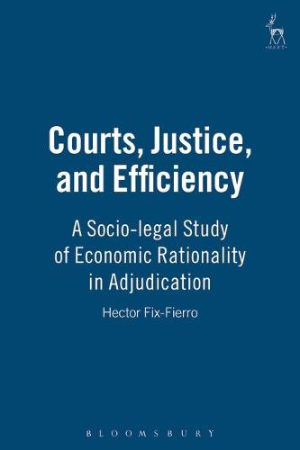 Courts, Justice, and Efficiency: A Socio-Legal Study of Economic Rationality in Adjudication (Hardback)