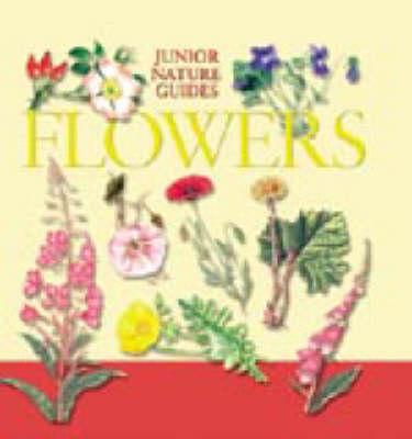 JR NATURE GUIDES WILD FLOWERS (Hardback)
