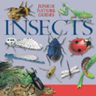 JR NATURE GUIDES INSECTS (Hardback)