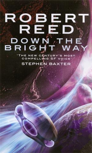 Down The Bright Way (Paperback)