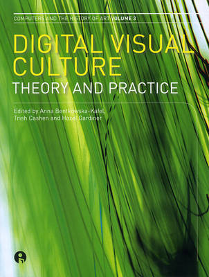 Digital Visual Culture: Theory and Practice (Paperback)