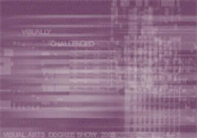 Visually Challenged 2005: Visual Arts Degree Show Catalogue (Paperback)