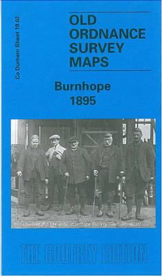 Burnhope 1895: Durham Sheet 19.02 - Old Ordnance Survey Maps of County Durham (Sheet map, folded)
