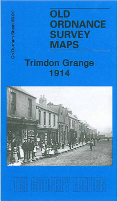 Trimdon Grange 1914: Durham Sheet 36.01 - Old Ordnance Survey Maps of County Durham (Sheet map, folded)