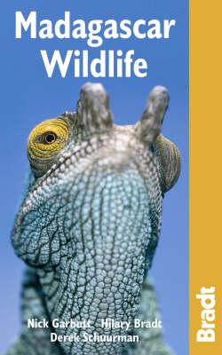 Madagascar Wildlife - Bradt Travel Guides (Wildlife Guides) (Paperback)