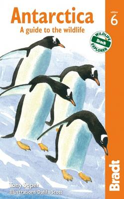 Antarctica: A Guide to the Wildlife - Bradt Travel Guides (Wildlife Guides) (Paperback)
