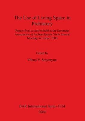 The Use of Living Space in Prehistory: Papers from a session held at the European Association of Archaeologists Sixth Annual Meeting in Lisbon 2000 - British Archaeological Reports International Series (Paperback)