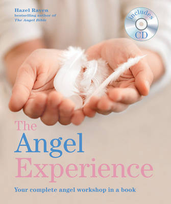 The Angel Experience: Your Complete Angel Workshop in a Book (Paperback)