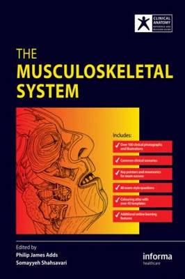 The Musculoskeletal System (Paperback)