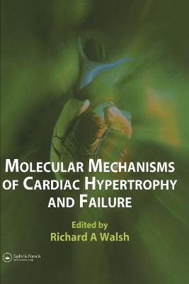 Molecular Mechanisms of Cardiac Hypertrophy and Failure (Hardback)