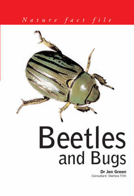 Beetles and Bugs - Nature Fact File (Paperback)