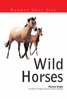 Wild Horses - Nature Fact File S. (Paperback)