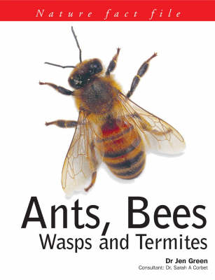 Ants, Bees, Wasps and Termites - Nature Fact File S. (Paperback)