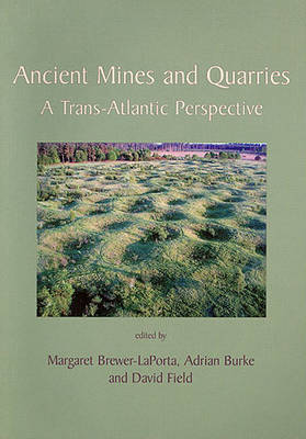 Ancient Mines and Quarries: A Trans-Atlantic Perspective (Paperback)
