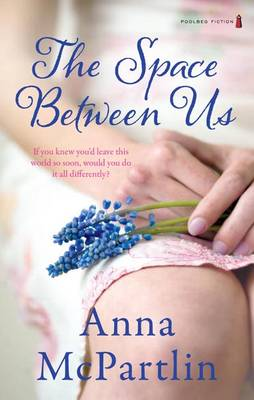 The Space Between Us (Paperback)