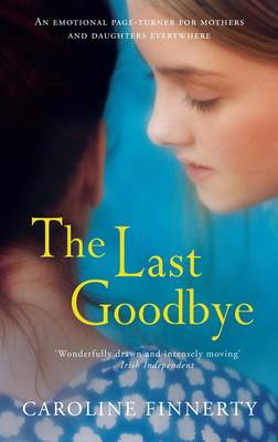 The Last Goodbye (Paperback)