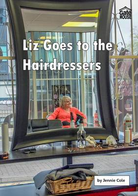 Liz Goes to the Hairdressers - Liz and Joe Series (Paperback)